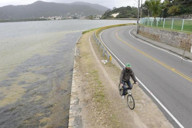 Ciclovia será construída por quase 3km na Rua Vereador Osni Ortiga. Foto: Edu Cavalcanti / Agencia RBS.